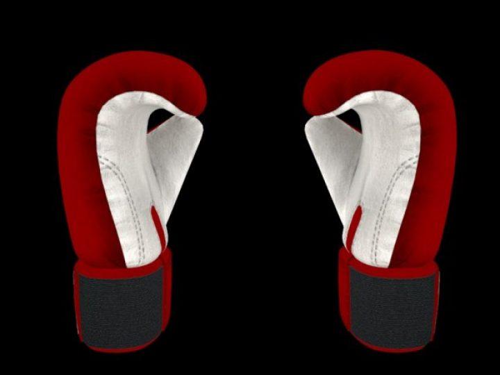 مدل سه بعدی دستکش های بوکس